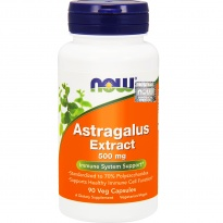 NOW Foods ASTRAGALUS EXTRACT 500 mg -suplement diety- 90 kapsułek